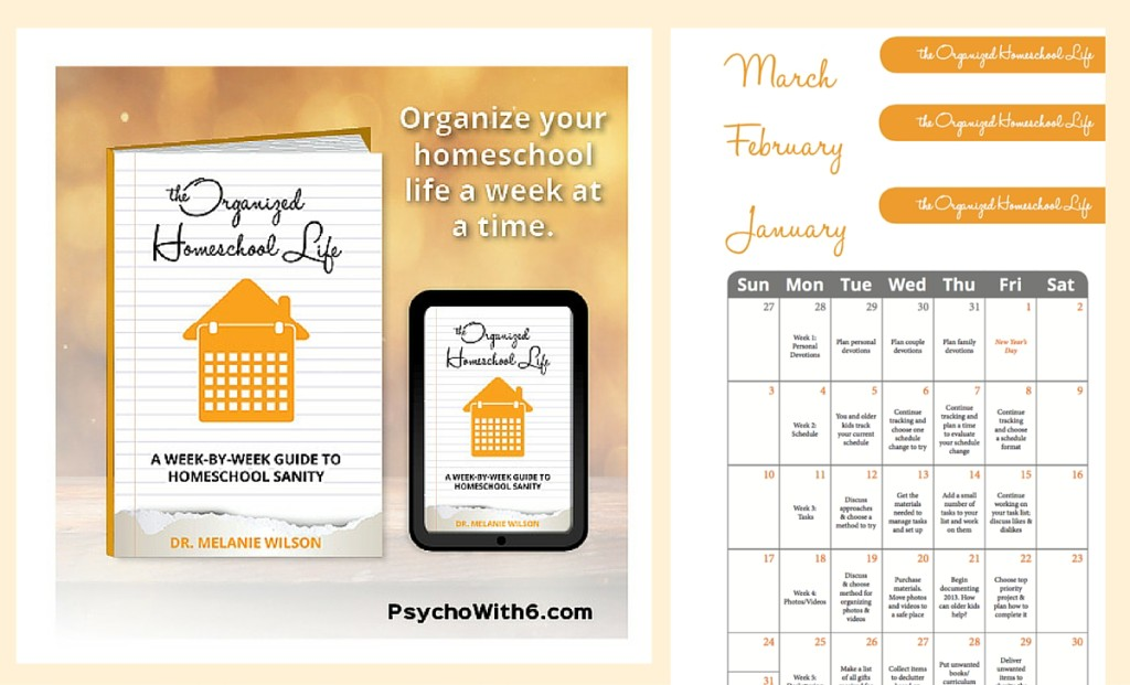 The Organized Homeschool Life | how to get organized with the FLYLady