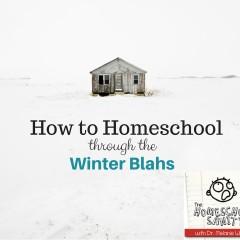 How to Homeschool Through the Winter Blahs