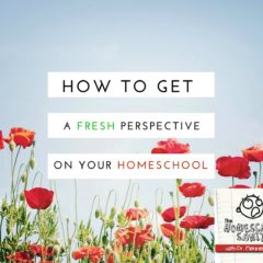 How to Get a Fresh Perspective on Your Homeschool