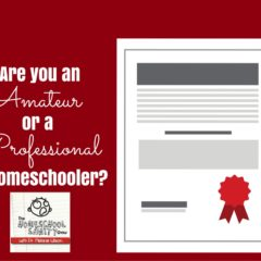 Are you an Amateur or Professional Home Educator?