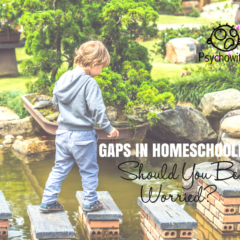 Educational Gaps: Should You Be Worried?