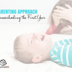 Parenting Approach: Homeschooling, the First Year