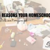 6 Reasons Your Homeschool Still Isn't Organized